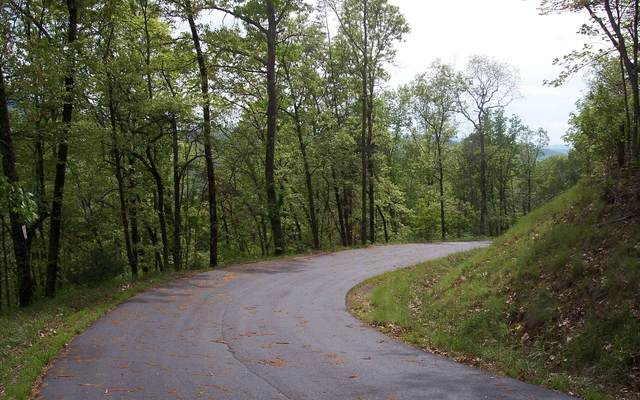 30 Coyote Cove, Hayesville, NC 28904 (MLS #295289) :: Path & Post Real Estate