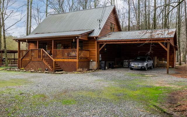 45 Newport Drive, Ellijay, GA 30540 (MLS #295314) :: RE/MAX Town & Country