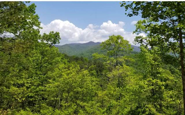 10 Eagle Fork Overlook, Hayesville, NC 28904 (MLS #295348) :: Path & Post Real Estate