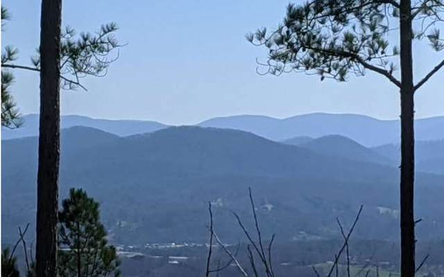 LT 24 Thirteen Hundred, Blairsville, GA 30512 (MLS #295363) :: RE/MAX Town & Country