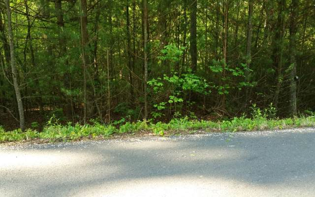 LT15 Enchanted Woods Dr, Blairsville, GA 30512 (MLS #295383) :: RE/MAX Town & Country