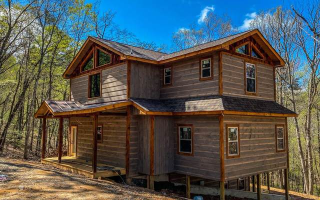 141 Rooks Road, Mineral Bluff, GA 30559 (MLS #295433) :: RE/MAX Town & Country