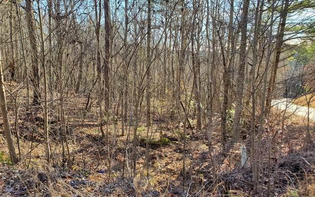 LT4 Spring Ridge, Morganton, GA 30560 (MLS #295485) :: Path & Post Real Estate