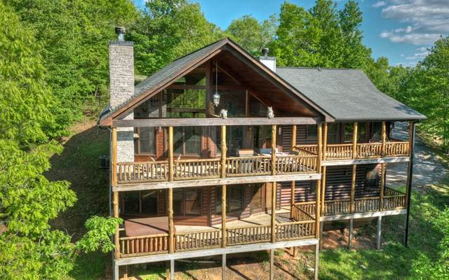 180 Cinnamon Bear Road, Mineral Bluff, GA 30559 (MLS #296051) :: RE/MAX Town & Country