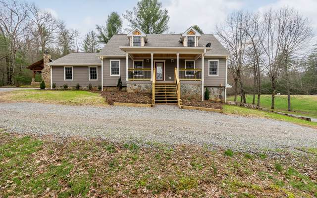 295 Black Ankle Creek, Cherry Log, GA 30522 (MLS #296145) :: RE/MAX Town & Country