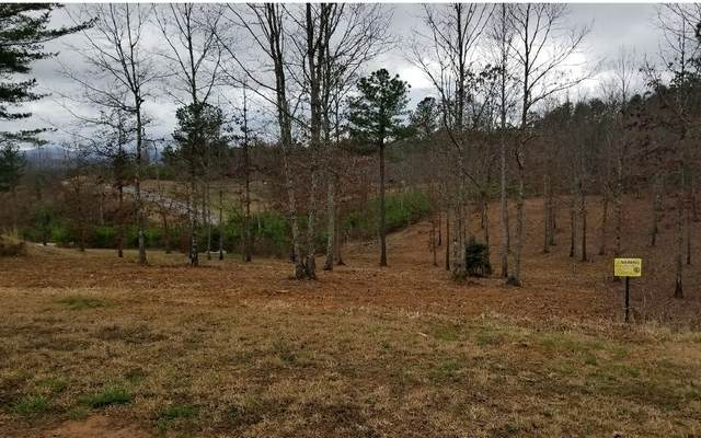 LT 52 Northshore, Blairsville, GA 30512 (MLS #296149) :: RE/MAX Town & Country
