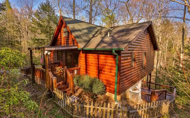 99 Hidden Valley Court, Cherry Log, GA 30522 (MLS #296520) :: RE/MAX Town & Country