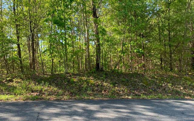 L 57 Fires Creek Cove, Hayesville, NC 28904 (MLS #296929) :: RE/MAX Town & Country