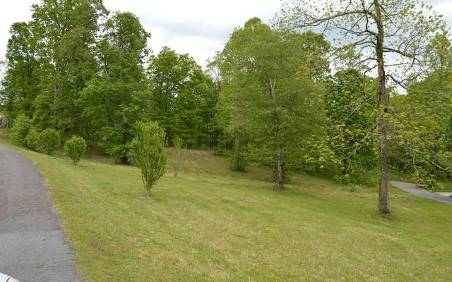 #30 Meadow Brooke, Young Harris, GA 30582 (MLS #297273) :: RE/MAX Town & Country