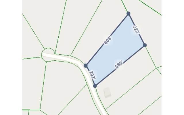 LOT14 Foxpaw Leaf Ct, Ellijay, GA 30536 (MLS #297347) :: Path & Post Real Estate