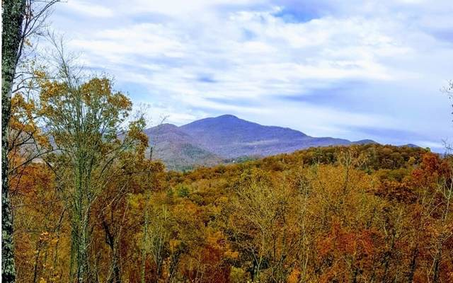 LOT18 Fodder Creek Mill, Hiawassee, GA 30546 (MLS #297396) :: Path & Post Real Estate