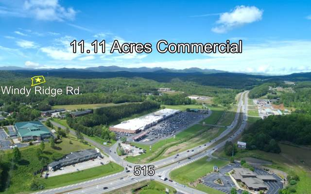 166 Windy Ridge Road, Blue Ridge, GA 30513 (MLS #297459) :: RE/MAX Town & Country