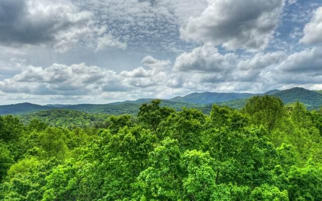 LT 18 Settlers Ridge Rd., Ellijay, GA 30540 (MLS #297751) :: Path & Post Real Estate