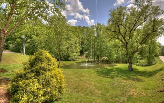 LT 31 Settlers Ridge Rd., Ellijay, GA 30540 (MLS #297754) :: Path & Post Real Estate
