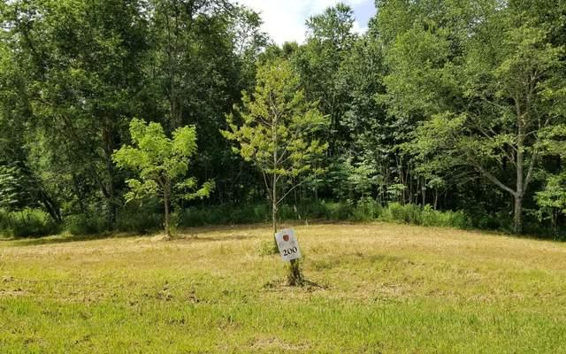 LT200 Owen Glen, Blairsville, GA 30512 (MLS #297882) :: Path & Post Real Estate