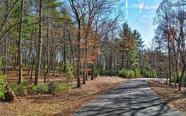 LT 18 Fox Lake, Blairsville, GA 30512 (MLS #297907) :: Path & Post Real Estate