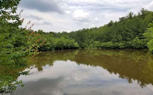 LT 29 Spring Creek Rd, Blairsville, GA 30512 (MLS #297965) :: Path & Post Real Estate