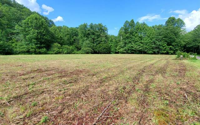 24 Tusquittee Xing, Hayesville, NC 28904 (MLS #298542) :: RE/MAX Town & Country