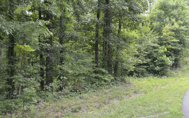 861 Trinton Drive, Ranger, GA 30705 (MLS #298714) :: Path & Post Real Estate
