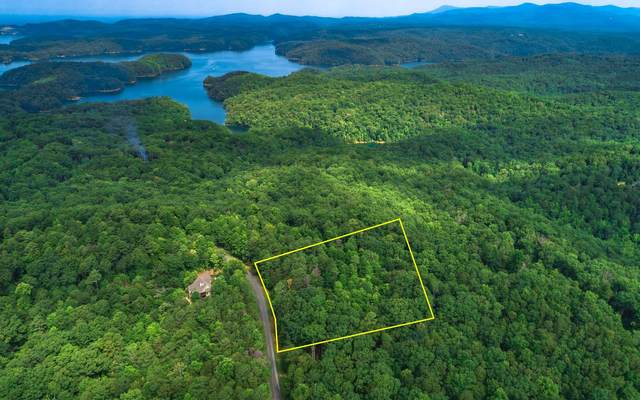 LT 85 Doll Mountain Road, East Ellijay, GA 30540 (MLS #298925) :: RE/MAX Town & Country