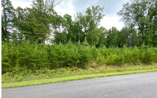 202 Lola Dr., Blairsville, GA 30512 (MLS #298937) :: RE/MAX Town & Country