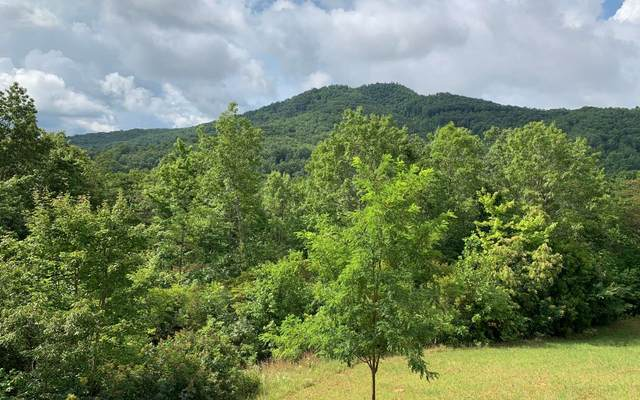 LT 15 Smoke Rise Drive, Hayesville, NC 28904 (MLS #299239) :: RE/MAX Town & Country
