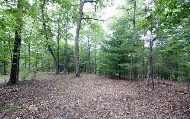 LOT 2 Wildwood, Young Harris, GA 30582 (MLS #299774) :: Path & Post Real Estate