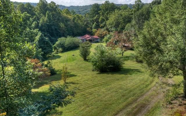 1466 Aska Road, Blue Ridge, GA 30513 (MLS #300929) :: Path & Post Real Estate