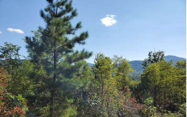 19 Chimney Top Trail, Murphy, NC 28906 (MLS #301082) :: Path & Post Real Estate