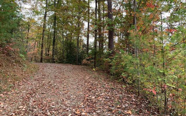 11 Laurel Branch Rd, Murphy, NC 28906 (MLS #302075) :: Path & Post Real Estate