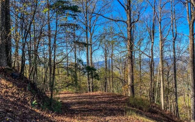 Walnut Mountain, Ellijay, GA 30536 (MLS #302898) :: RE/MAX Town & Country