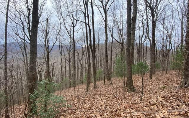 LT 11 Big Creek Highlands, Ellijay, GA 30536 (MLS #303005) :: Path & Post Real Estate
