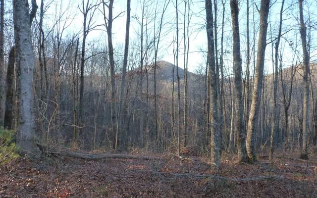18 Trillium Heights, Brasstown, NC 28902 (MLS #303017) :: Path & Post Real Estate