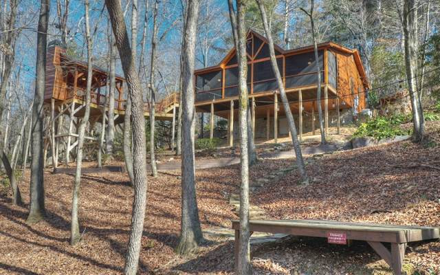 219 Jimmy D Court, Ellijay, GA 30540 (MLS #303152) :: Path & Post Real Estate