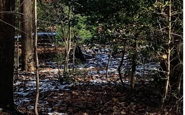 LT102 Badger Road, Blairsville, GA 30512 (MLS #303435) :: Path & Post Real Estate