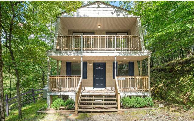 393 Garnet Dr, Ellijay, GA 30540 (MLS #303438) :: RE/MAX Town & Country