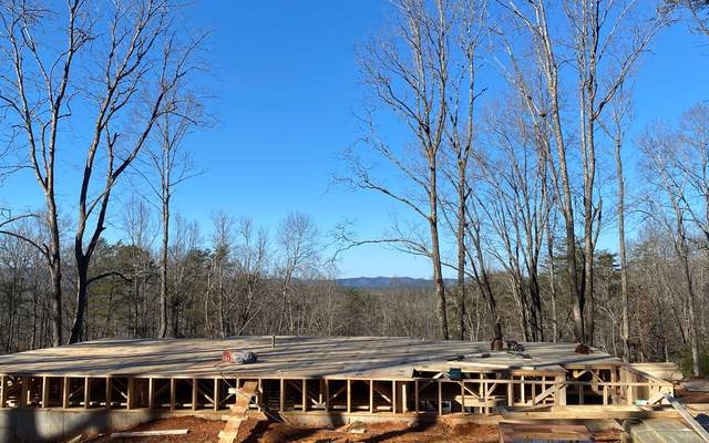 326 Grayson Point, Blue Ridge, GA 30513 (MLS #303606) :: Path & Post Real Estate