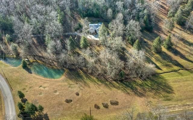 100 Holly Hill, Blue Ridge, GA 30541 (MLS #303650) :: RE/MAX Town & Country
