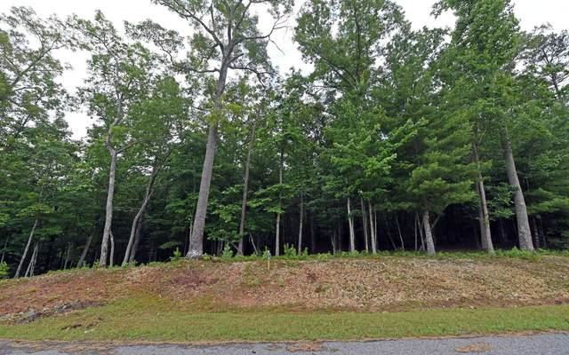 LT4 Sharptop Settlement, Blairsville, GA 30512 (MLS #303823) :: Path & Post Real Estate