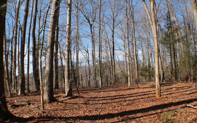 LOT 2 New Liberty Trail, Ellijay, GA 30540 (MLS #304030) :: Path & Post Real Estate