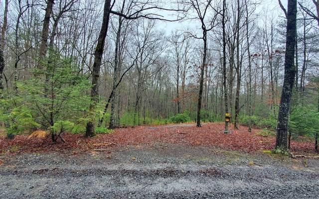 LOT 9 Peter Knob, Blue Ridge, GA 30513 (MLS #304484) :: Path & Post Real Estate