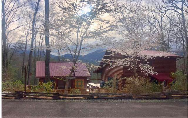 211 Hidden Lake Lane, Cherry Log, GA 30522 (MLS #305330) :: RE/MAX Town & Country