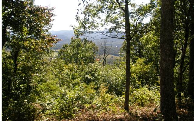 22M-26M MTN HARBOUR, Hayesville, NC 28904 (MLS #305356) :: Path & Post Real Estate