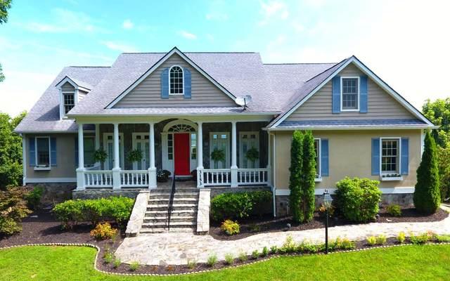 3153 Blue Ridge Trail, Hiawassee, GA 30546 (MLS #305412) :: RE/MAX Town & Country