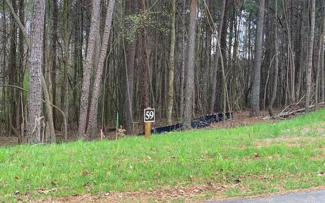 LT 59 Linger Longer, Ellijay, GA 30536 (MLS #305520) :: Path & Post Real Estate