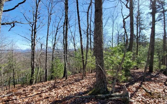 Enchanting Circle, Morganton, GA 30560 (MLS #305534) :: Path & Post Real Estate