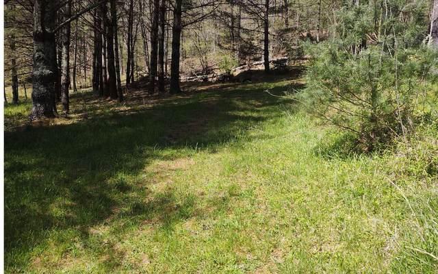 LOT 1 Spaniard Branch, Hiawassee, GA 30546 (MLS #305953) :: Path & Post Real Estate