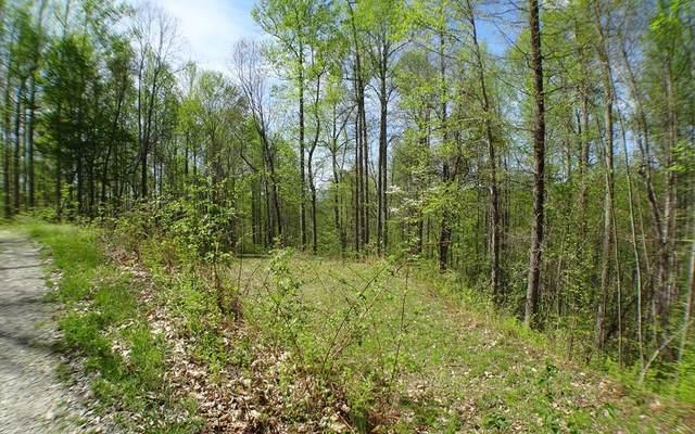 #7 Deweese Rd, Topton, NC 28781 (MLS #305982) :: Path & Post Real Estate