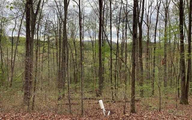11 E Licklog Ridge, Hayesville, NC 28904 (MLS #306033) :: RE/MAX Town & Country