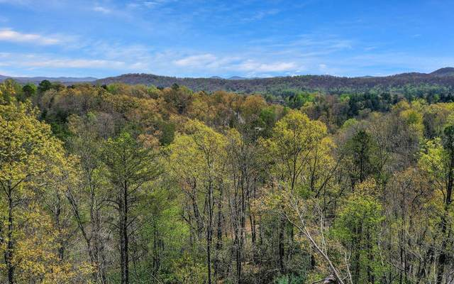 2 Mountain Tops Circle, Blue Ridge, GA 30513 (MLS #306078) :: RE/MAX Town & Country